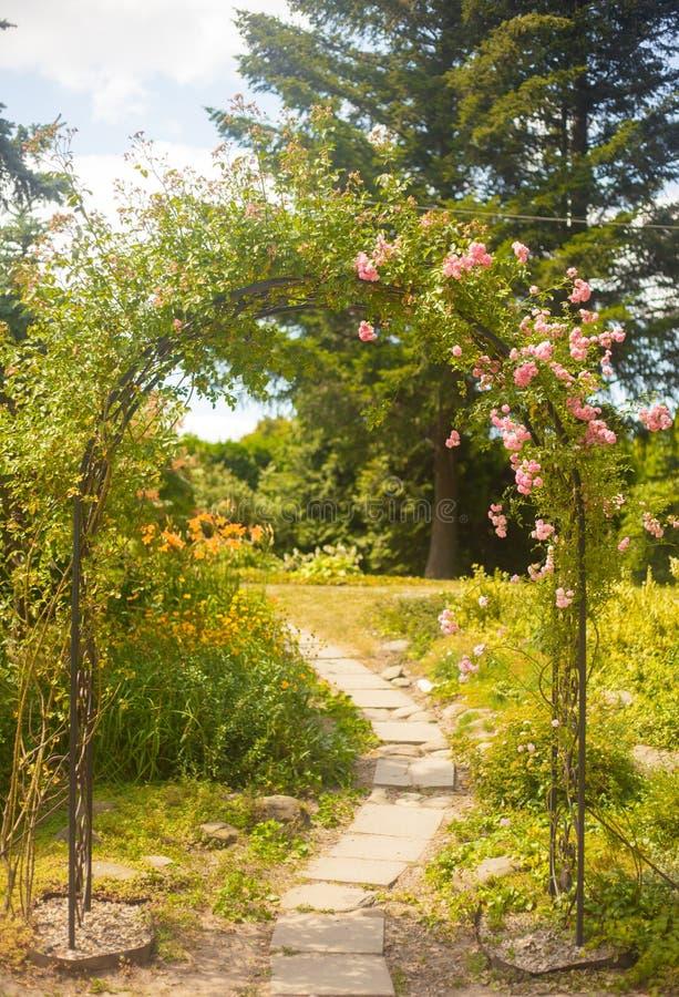 Decoratieve boog met rozen in de de zomertuin stock afbeelding