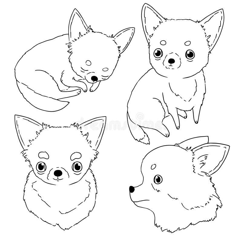 Decoratieve contourillustraties van chihuahua op witte achtergrond Hand getrokken dierlijke schetsen in eenvoudige stijl vector illustratie