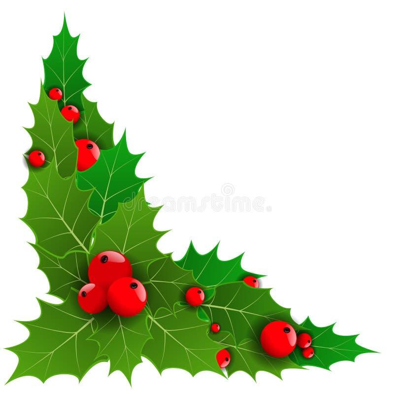 Decoratieve hoek of met de bessen van de Kerstmishulst voor uw grenzen Vector illustratie vector illustratie