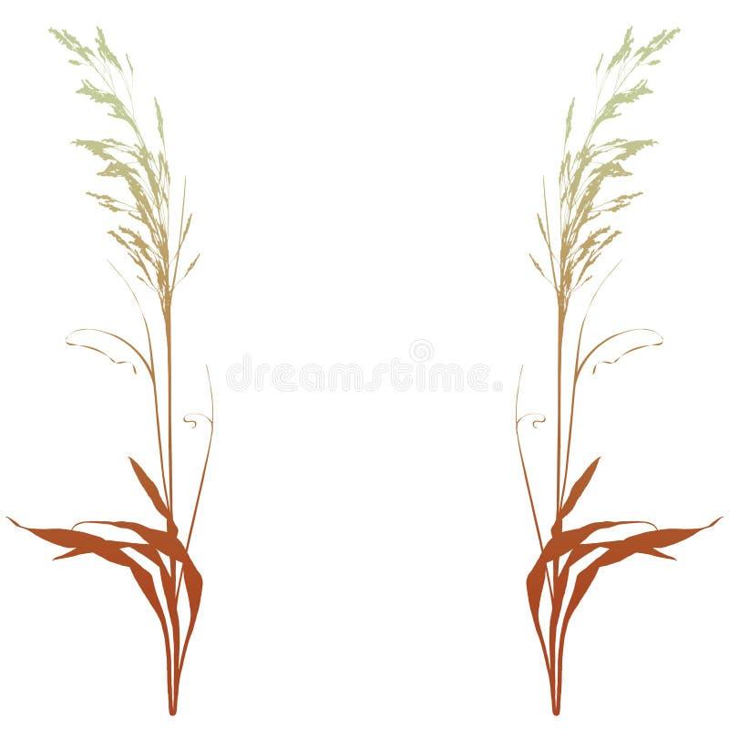Decoratieve installaties (vector) stock illustratie