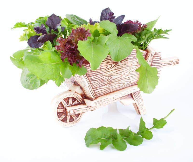 Decoratieve kar met gezonde greens royalty-vrije stock afbeeldingen