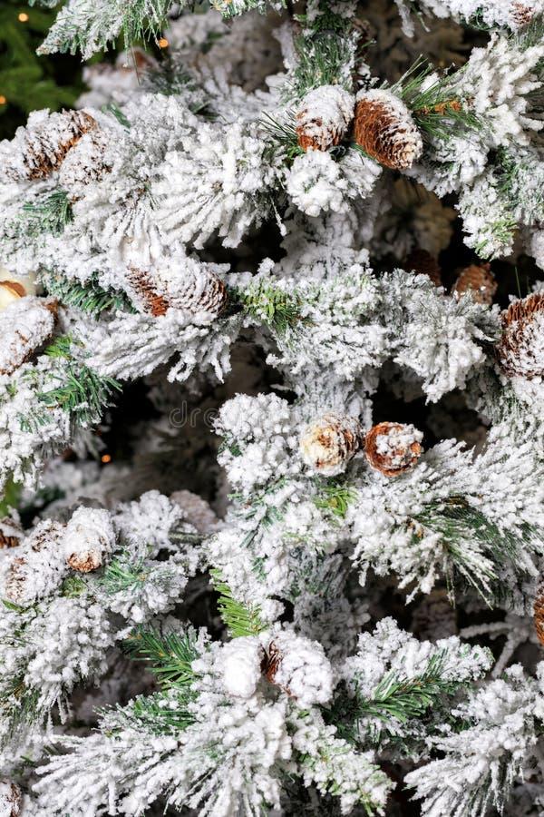 Decoratieve kegels voor takken die besmeurd zijn met decoratieve sneeuw, lijken op echte royalty-vrije stock foto's