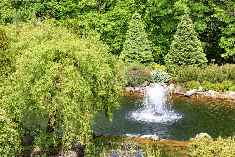 Decoratieve vijver met een fontein in een mooi de zomerpark royalty-vrije stock foto's