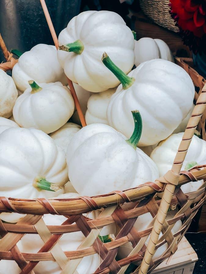 Decoratieve witte pompoenen in een mand op de markt royalty-vrije stock afbeelding
