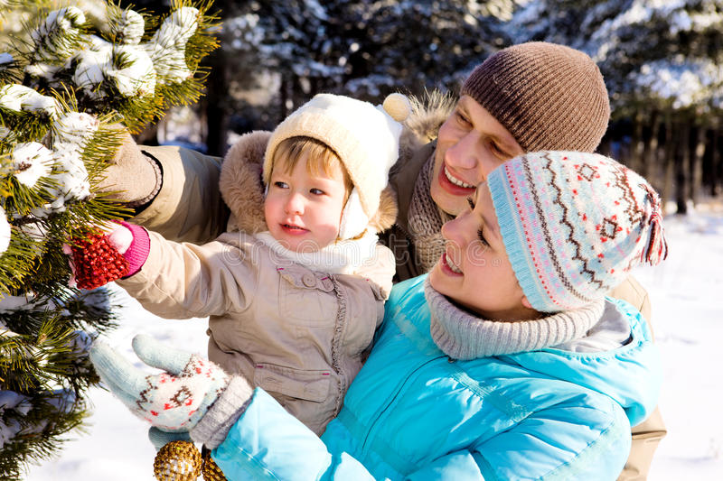Download Decorating Christmas tree stock photo. Image of family - 15033616