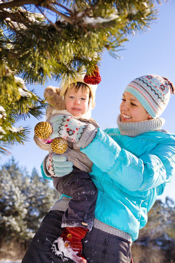 Download Decorating Christmas Tree Stock Photos - Image: 15531473