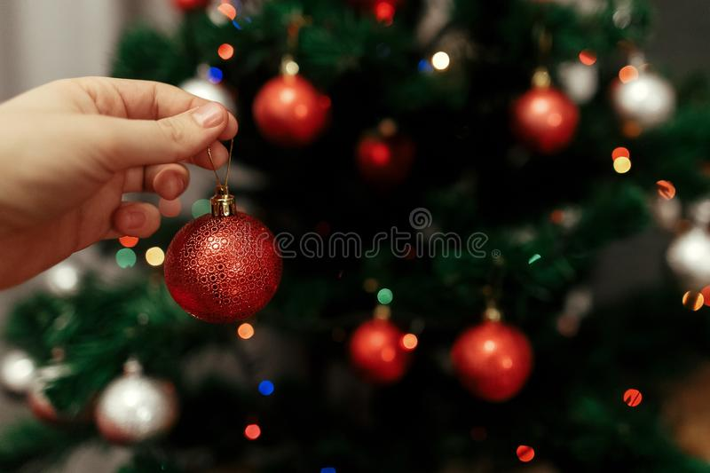 decorating christmas tree at home. hand holding red ball ornament close up on background of christmas tree with colorful lights. stock image