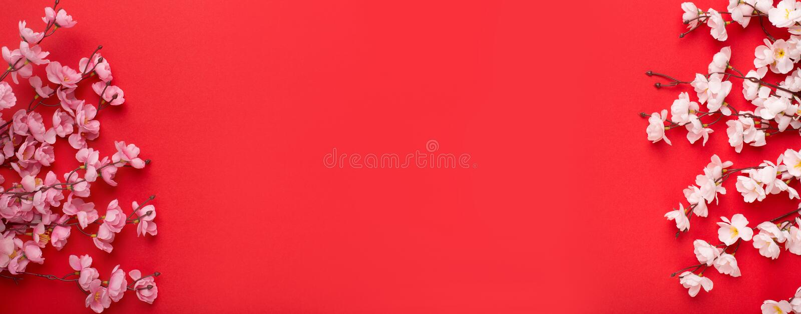 Decorating Design Chinese new year 2020 red background. With plum branches mean happy ,healthy and wealthy, panorama, copy space royalty free stock photos