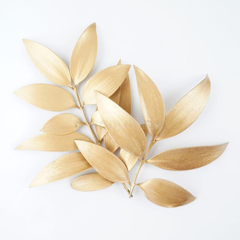 gold painted leaf design elements. stock photography