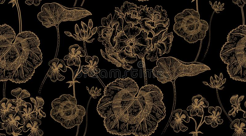 Flower geranium. Seamless floral pattern. royalty free illustration