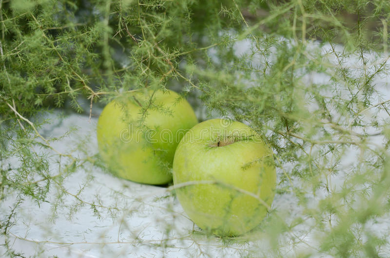 Download Decoration With Green Apples And Asparagus On White Background Stock Photo - Image: 33520646