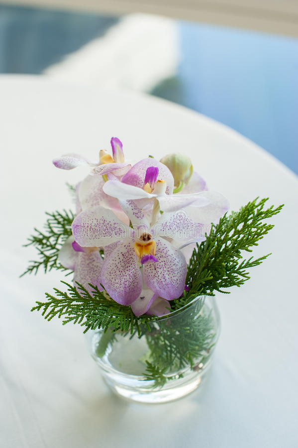 Decoration at home. orchids in small glass vases stock images