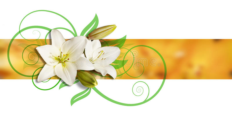 Download Decoration Of Lilies And Ornament Stock Illustration - Image: 9995514