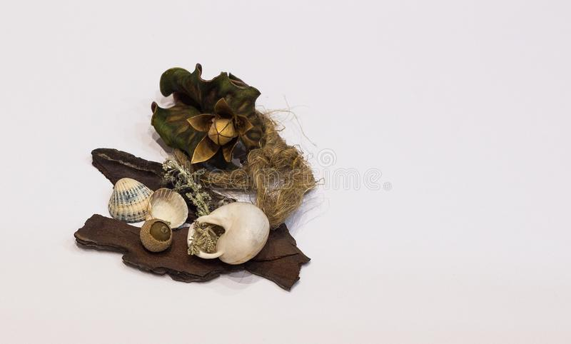 Decorations and shells stock photography