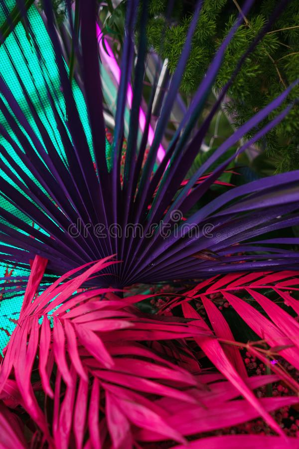 Decoration of tropical leaves painted in bright neon colors. royalty free stock image