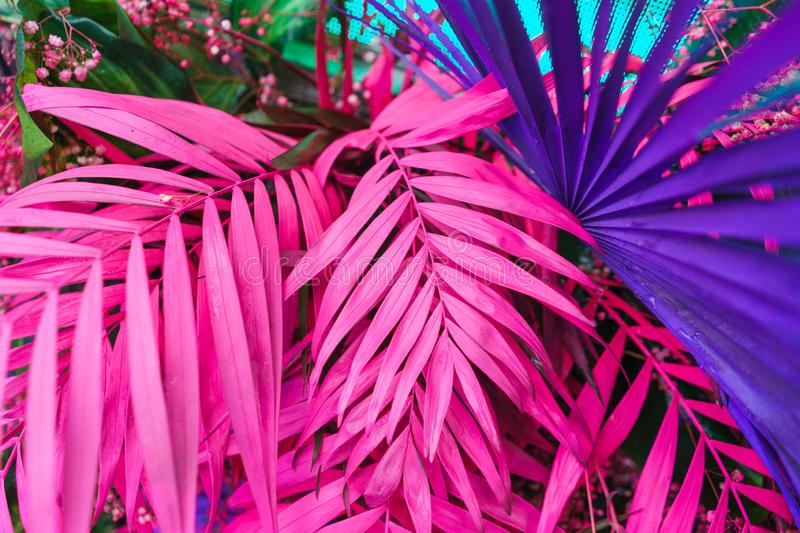 Decoration of tropical leaves painted in bright neon colors. Stylish psychedelic hallucinogenic decorations. Abstract background of palm leaves. Soft , bokeh stock image