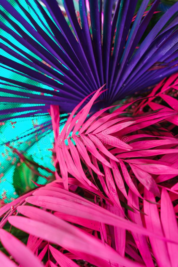 Decoration of tropical leaves painted in bright neon colors. royalty free stock photo