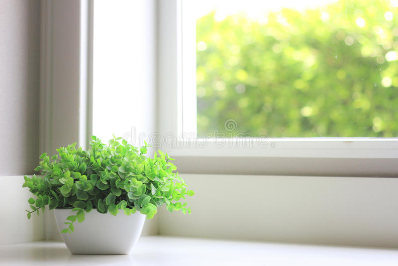 Decorative Artificial flowers near window light. royalty free stock photography