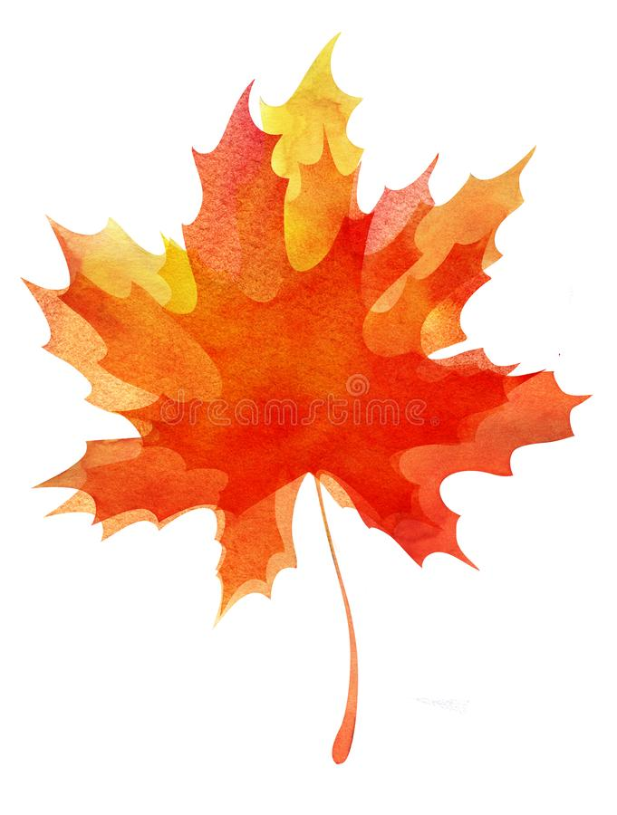 Decorative background. Multilayer autumn maple leaf. Orange-yellow gradient. Abstract watercolor fill. Hand drawn. Illustration. Elements isolated on white vector illustration