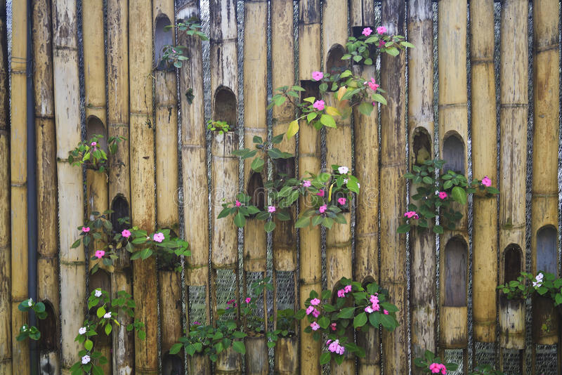 Decorative bamboo fence royalty free stock photos