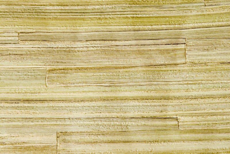 Decorative bamboo wallpaper stock images