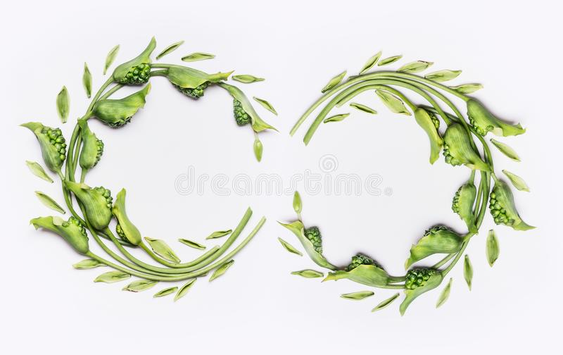 Decorative botanical flower double wreath frames made of green different flowers and leaves, flat lay stock image