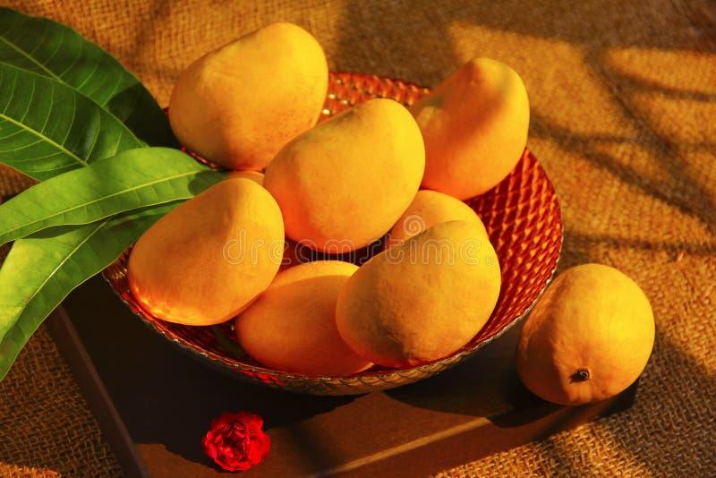[Image: decorative-bowl-full-fresh-alphonso-mang...201989.jpg]