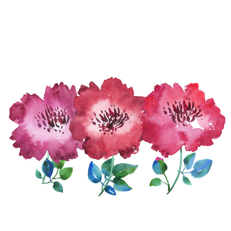 Floral Header Icard Ibaldo Co