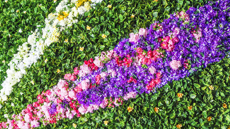 Decorative carpet of colorful flowers royalty free stock photo