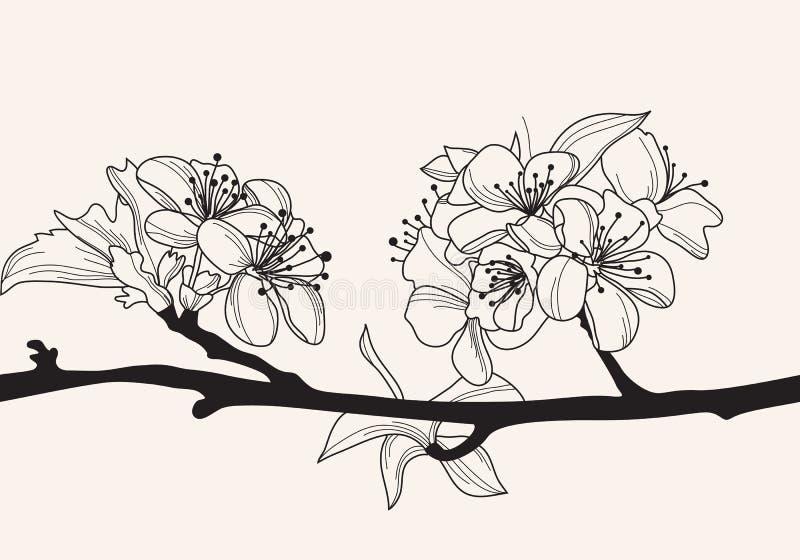 Decorative cherry blossom royalty free illustration
