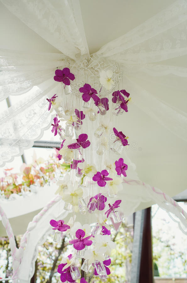 Decorative composition of orchids. stock photo