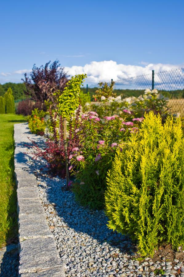 Decorative garden with green summer plants royalty free stock photography