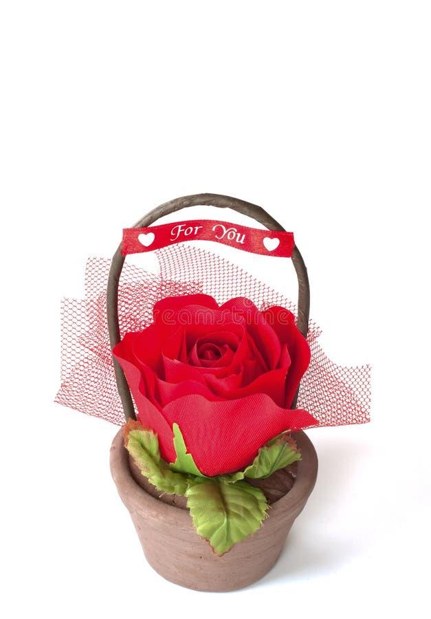 Decorative flower. On white background royalty free stock photography