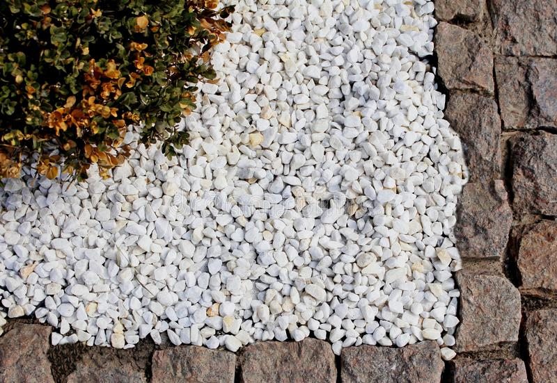 Decorative flower bed decorated with stone stock photo