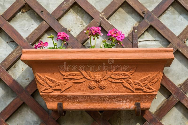 Decorative Flower Pot on Wooden Wall Decor stock image
