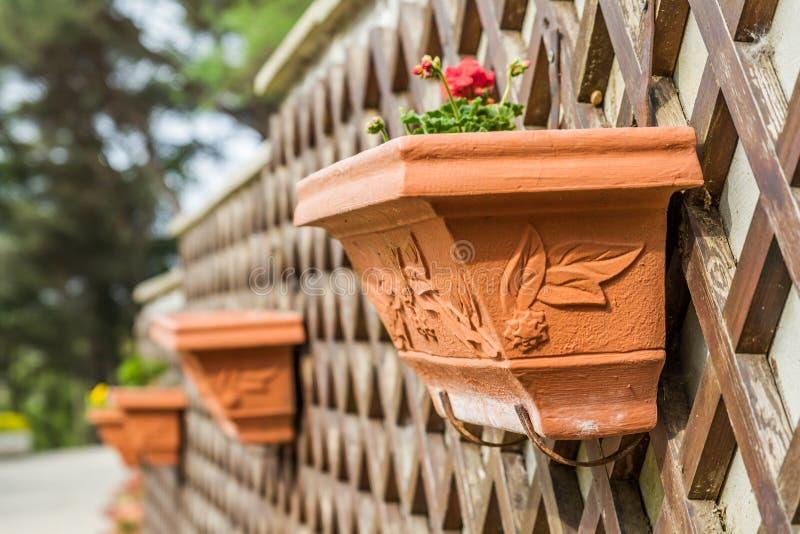 Decorative Flower Pot on Wooden Wall Decor stock photo