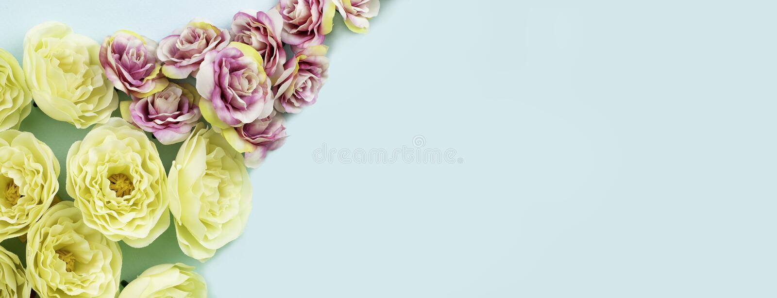 Yellow and pink roses on blue background. Space for text.  Banner format.  Greeting card concept. stock photo