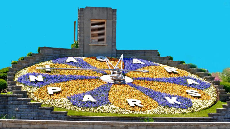 Decorative flowery clock stock image