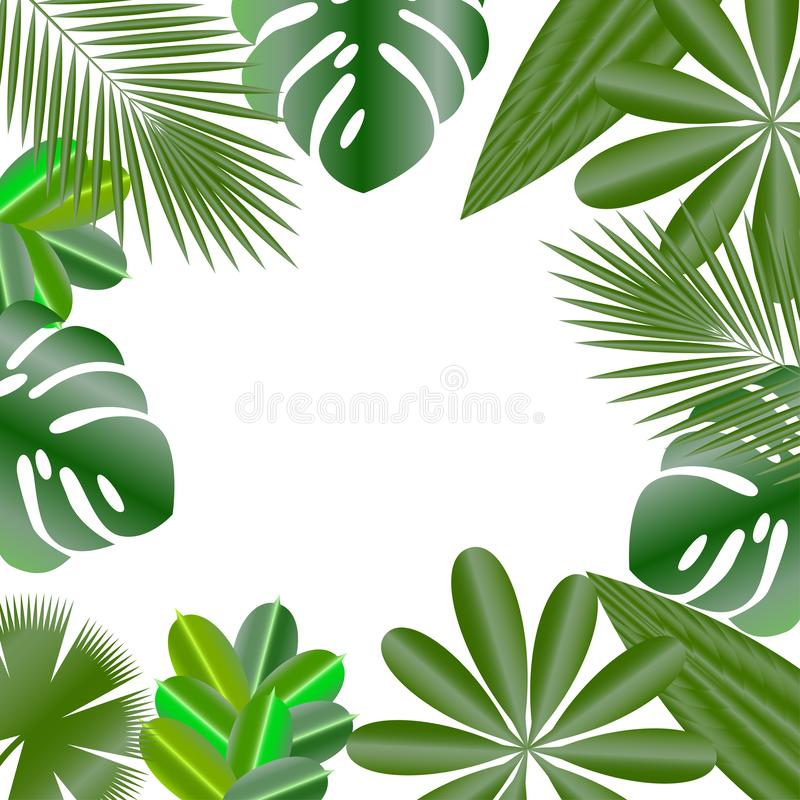 Decorative frame. Leaves of tropical plants. Isolated items. Monstera, ficus, palm tree Schefflera. Decorative frame. Leaves of tropical plants. Isolated items royalty free illustration
