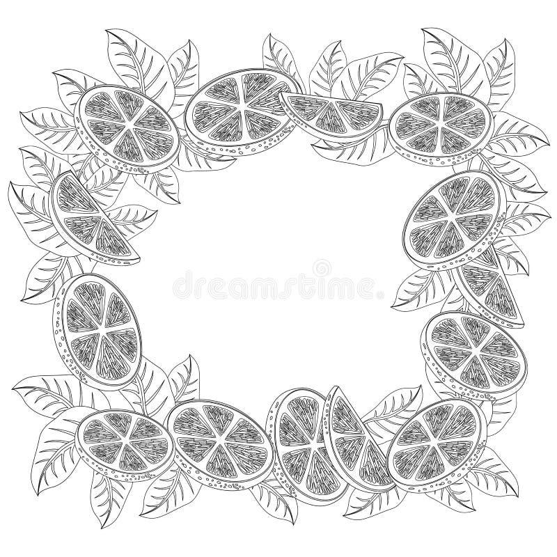 Decorative frame of oranges stock illustration