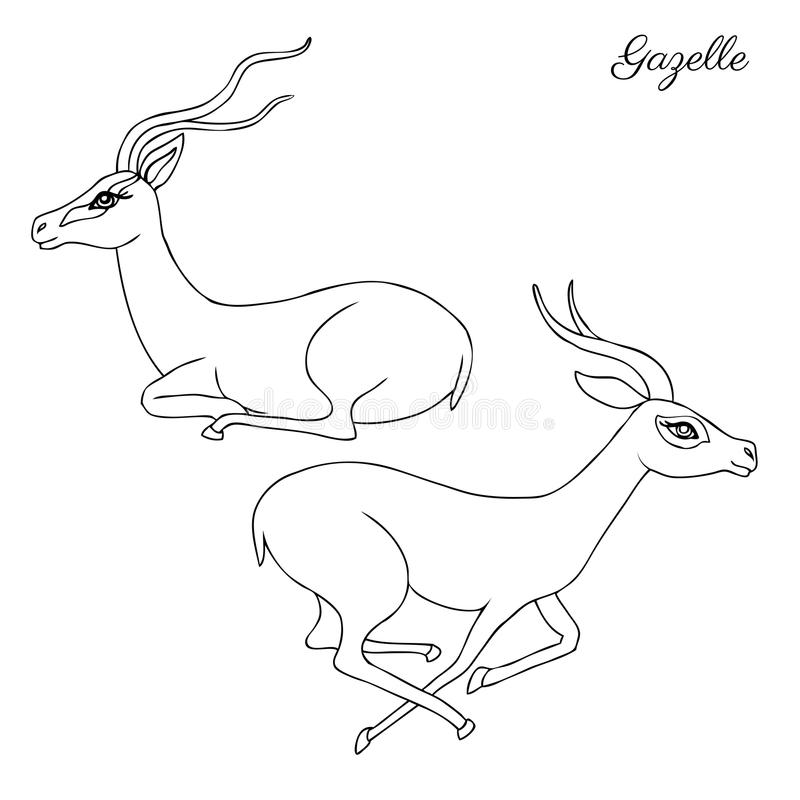 Decorative Gazelle graphic hand drawn vector cartoon doodle animal illustration, running and sitting African safari stock illustration