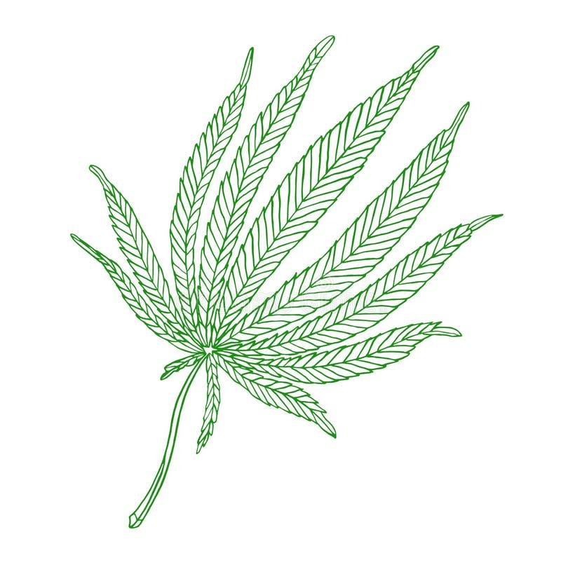 Decorative green illustration leave of big hemp. Decorative illustration green leave of big hemp on white background stock illustration