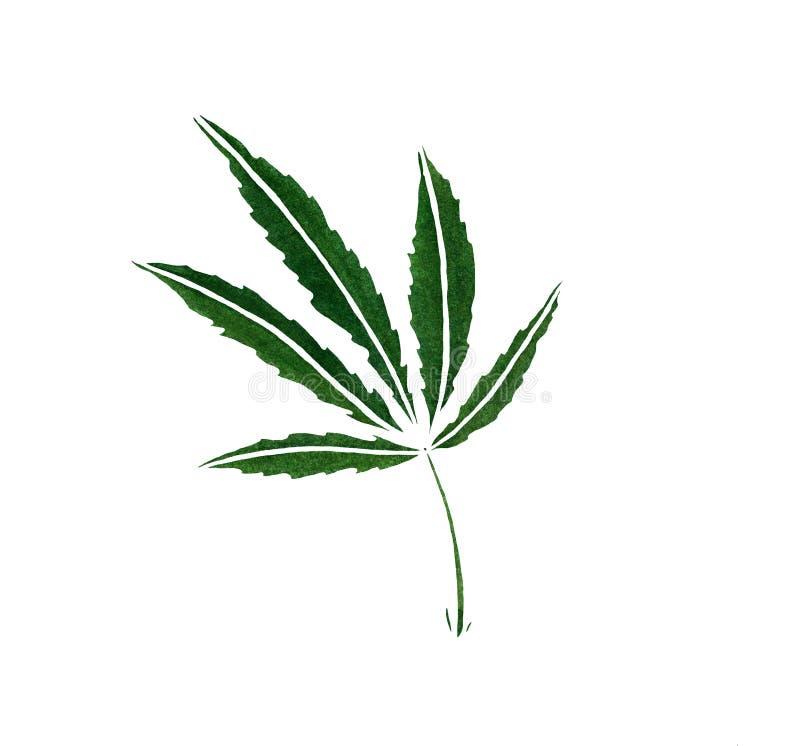 Decorative green trafaret leave of big hemp. On white background royalty free illustration