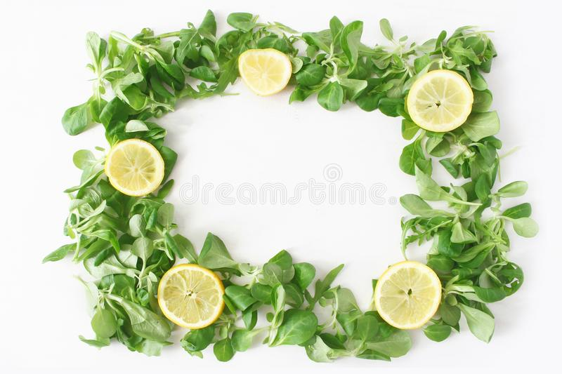 Decorative green vegetable frame composition. Various salad leaves. Arugula, rocket, corn salad with sliced lemons stock photos