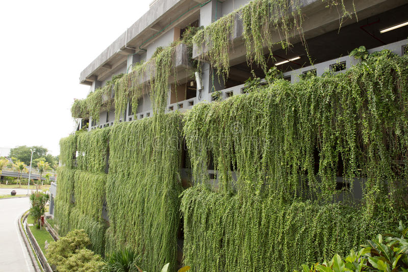Decorative hanging garden on the more than one stories building stock photo