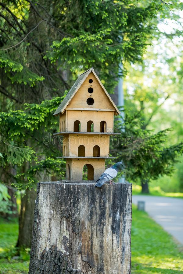 Decorative house for birds in the recreation Park. royalty free stock images