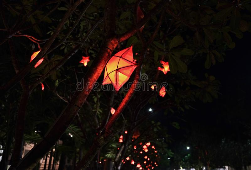 Decorative lanterns in the shape of stars hang on trees at night.  stock images