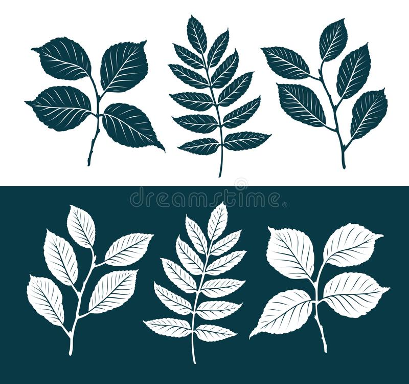 Decorative leaves set. Nature concept. Silhouette vector illustration. Isolated on white background stock illustration