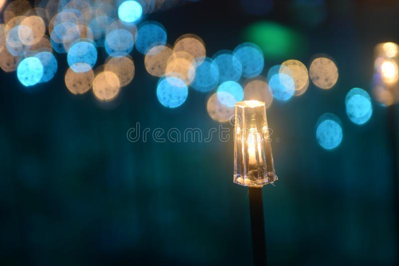 Decorative led fish light on the park law. Decorative led fish lights on the park lawn at night in holiday royalty free stock image