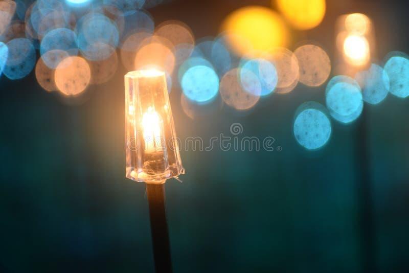 Decorative led fish light on the park law. Decorative led fish lights on the park lawn at night in holiday stock photo